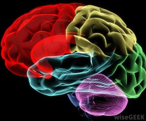 TBI – What is it?